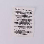 2.12x12mm ISO FDX-B Microchip Syringe